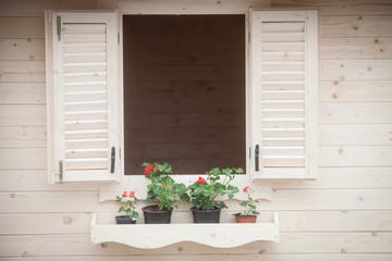Flowers on rustic window