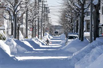 大雪の日の市街地 / 北海道の風景