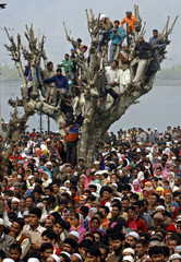 Kashmiri Muslims climb on a tree to have a glimpse of relic of Prophet Mohammad at Hazratbal shrine in Srinagar
