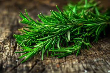 Fresh green aromatic rosemary on wooden table