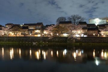 金沢の夜桜 主計町茶屋街