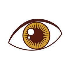 sexy female eye icon vector illustration design