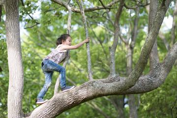 木に登る女の子