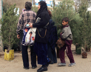 Iraqi residents shop for their Christmas tree in central Baghdad