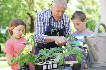 Kids helping grandpa with gardening