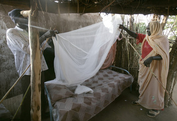Hadija Sahik sets up her new mosquito net that was donated to her by the German Red Cross in the village of El Moriib in Sudan
