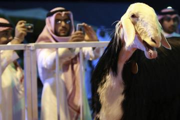 People take photographs of a Maaz Al Shami in Riyadh