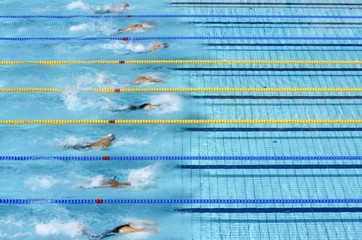 Swimmers compete in their men's 100 metres butterfly heat at the Athens 2004 Olympic Games.
