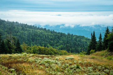 Hiking on a foggy day in Mont Tremblant National Park - Stock image