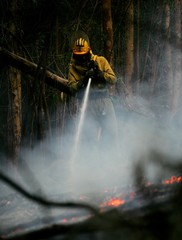 A firefighter tries to extinguish a forest fire in Cotorredondo