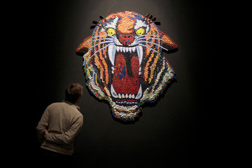 """A man looks at a creation titled """"Tiger heart"""" during the Santiago art triennial exhibition"""
