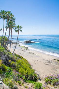 Laguna Beach Coastline in Orange County, California