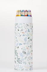 A concept photograph for the back to school theme, with colorful pencils and its container on the white background.