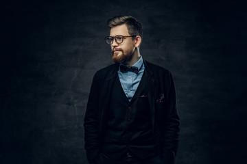 Bearded elegant male in eyeglasses dressed in a dark blue suit with bow tie.