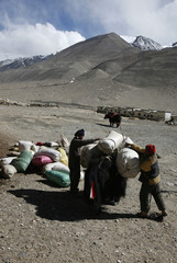 Yak herders load supplies onto their animals at the foot of Mount Everest in the Tibet Autonomous Region