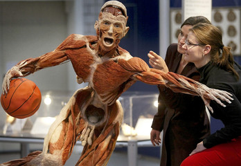 Two women look at plastinated human specimen in Frankfurt