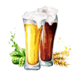 Dark and light beer, hops and malt. Watercolor