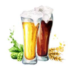 Dark and light beer, hops and malt. Watercolor