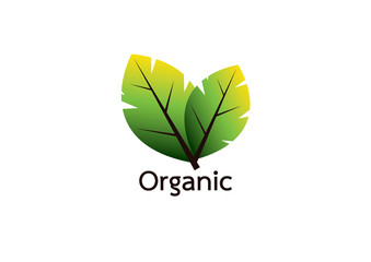 Organic food labels and elements for food and drink, restaurants and organic products vector illustration.