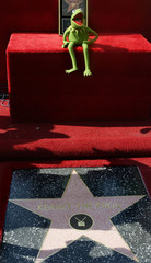 KERMIT THE FROG RECEIVES STAR ON HOLLYWOOD WALK OF FAME.