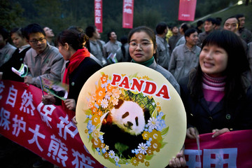 A woman holds a poster with a picture of a panda bear during a ceremony in Ya An marking the delivery of two panda bears  from China to Taiwan