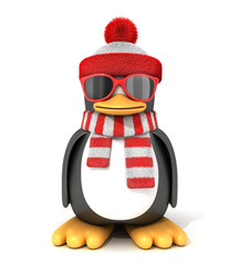 Penguin in a scarf and cap