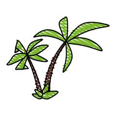 color crayon stripe tropical palm trees vector illustration