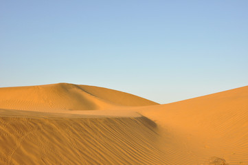 India Jaisalmer -  desert  Thar