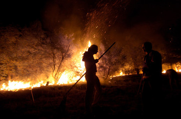 Firefighters and residents from Bitola try to extinguish a forest fire near Bitola