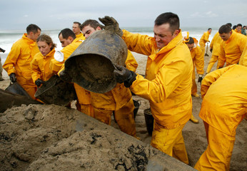 Spanish sailors dump buckets full of oil-soaked sand as they clean up a beach near Arteixo, northern..