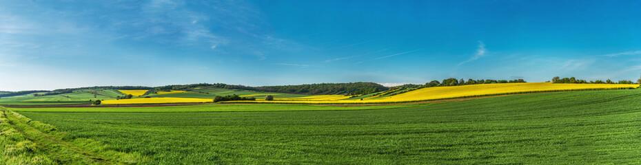 Photo sur Aluminium Bleu jean Landschaft mit Rapsfelder, Windräder Panorama