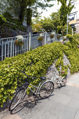 Two bicycles parking on footpath beside stone wall covered by creeping ivy