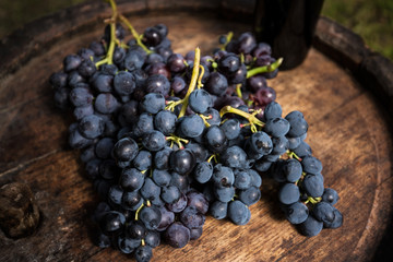 Red wine bottle,vine and bunch of grapes on a wooden barrel