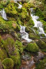 Spring water flows from the mossy rocks, close up