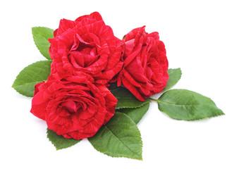 Three red roses.