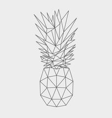 Polygonal pineapple fruit isolated on white background. Vector illustration