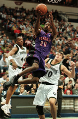 RAPTORS WILLIAMS SCORES PAST TIMBERWOLVES PEELER AND SZCZERBIAK.