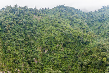 Mountains covered with a lush forest near San Miguel de Tucuman, Argentina