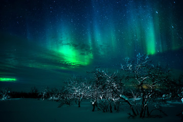 Northern Lights above the Finnmarksvidda, Norway