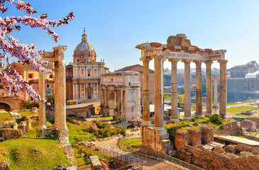 Canvas Prints Honey Roman ruins in Rome at spring, Italy