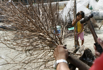 A girl watches a man make a Christmas tree using dry twigs along a street in Manila
