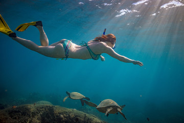 A girl snorkeling over coral reef full of ocean underwater life. Freediver watching sea turtles in natural habitat.
