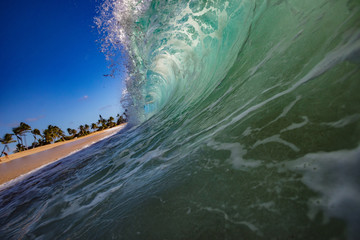 Shorebreak Ocean Wave in a shape of rip curl barrel, ready to crush against sand on a tropical beach. Hawaiian lifestyle