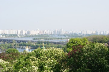 City above the big river, bridge over the river, spring, green trees