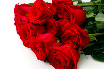 Bouquet of eleven red roses on white background.