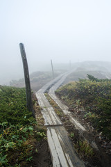 Wooden footpath in the mountains on a foggy day in Japan, in Asia - Stock image