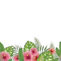 Floral Border Hand Painted Flower Illustration