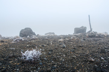 Rocks and stones on a very foggy day in Autumn - Stock image
