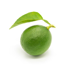 fresh lime with green leaf on white