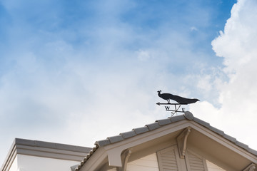 Weathervane with peacock